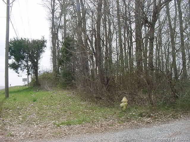 00 John Clayton Memorial Highway - Photo 1