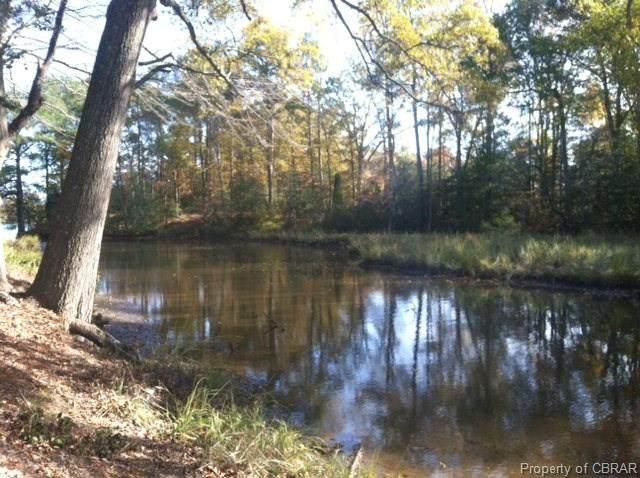 1 Apple Grove, Kilmarnock, VA 22482 (MLS #1620448) :: Village Concepts Realty Group