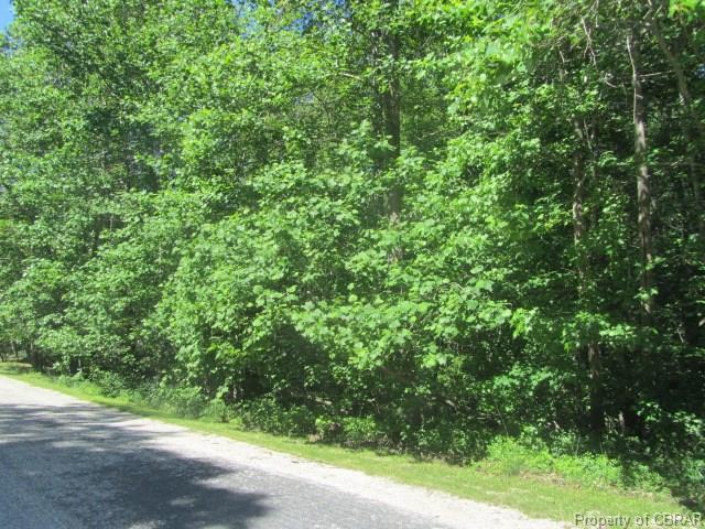 00 Poplar Springs Drive, Gloucester, VA 23061 (#1710103) :: Resh Realty Group