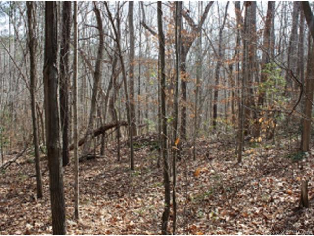 Lot 5 Deerwood Court, Gloucester, VA 23061 (#1716018) :: Green Tree Realty