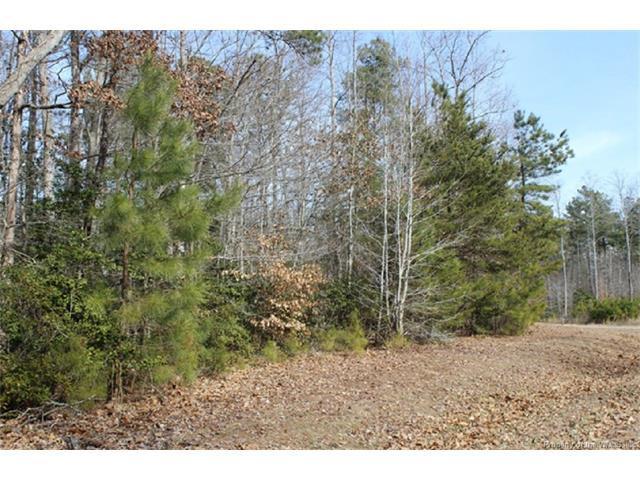 Lot 14 Deerwood Court, Gloucester, VA 23061 (#1716094) :: Green Tree Realty