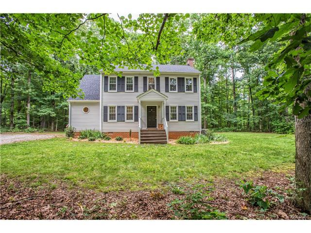 3235 Jefferson Woods Court, Powhatan, VA 23139 (MLS #1723306) :: The RVA Group Realty
