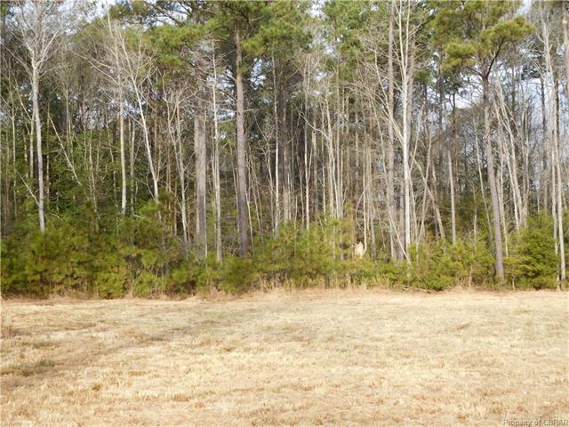 Lot E Buckschase, Gwynn, VA 23066 (MLS #1801640) :: RE/MAX Action Real Estate