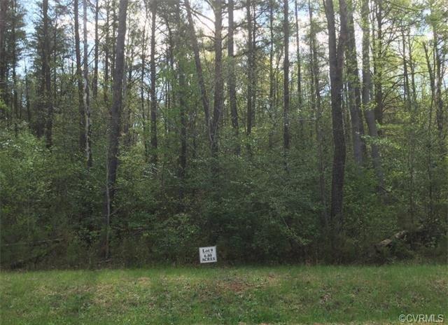 Lot 9 Wolf Swamp Lane, Montpelier, VA 23192 (#1802433) :: Abbitt Realty Co.