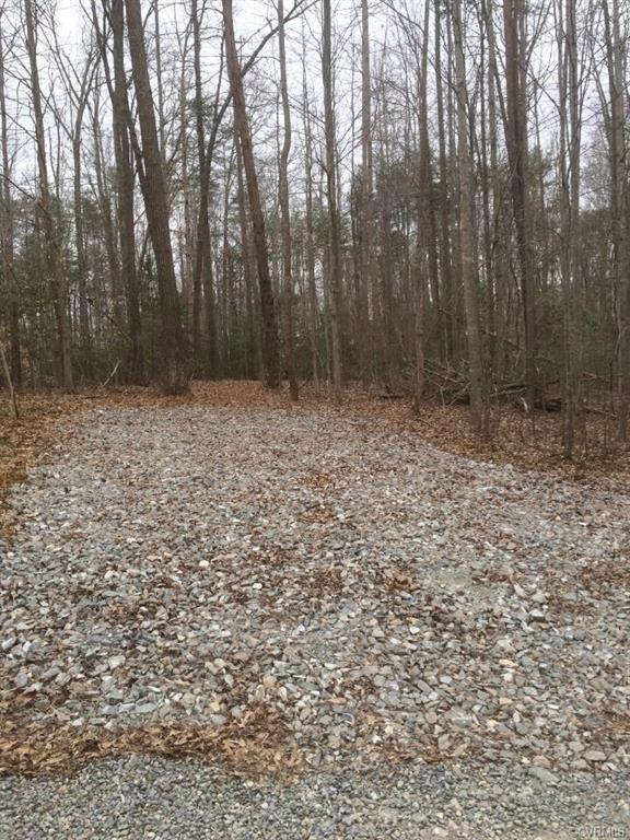 Cedar Hill Cooke Place, Mineral, VA 23117 (MLS #1812221) :: Small & Associates