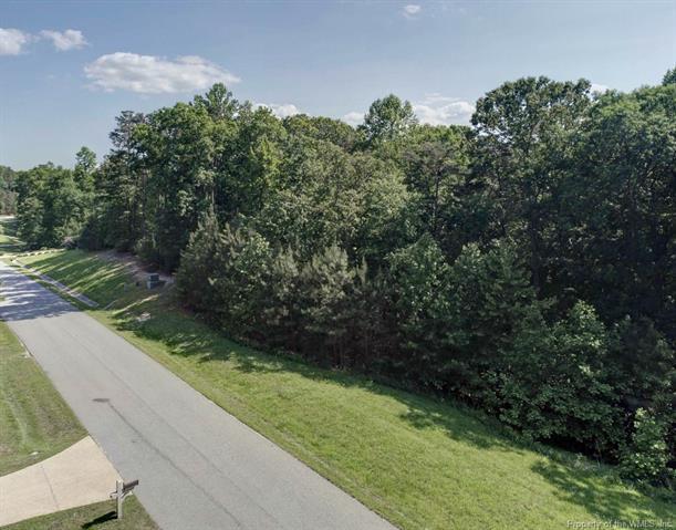 8209 Natures Way, Williamsburg, VA 23188 (#1816262) :: Resh Realty Group
