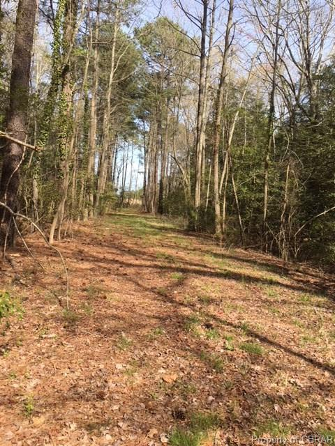 00 Lands End Road, Gloucester, VA 23061 (MLS #1817208) :: Chantel Ray Real Estate