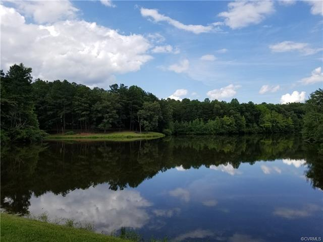 1216 The Forest, Crozier, VA 23039 (#1823875) :: Resh Realty Group