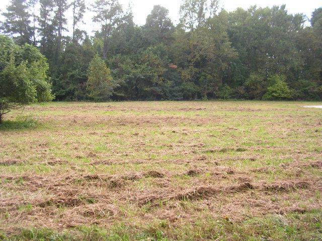 Lot 3 Kayak Cove Road, Hallieford, VA 23068 (MLS #109335) :: The Redux Group
