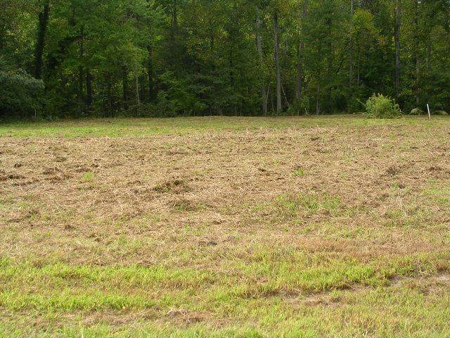 Lot 7 Kayak Cove Road, Hallieford, VA 23068 (MLS #109339) :: Village Concepts Realty Group