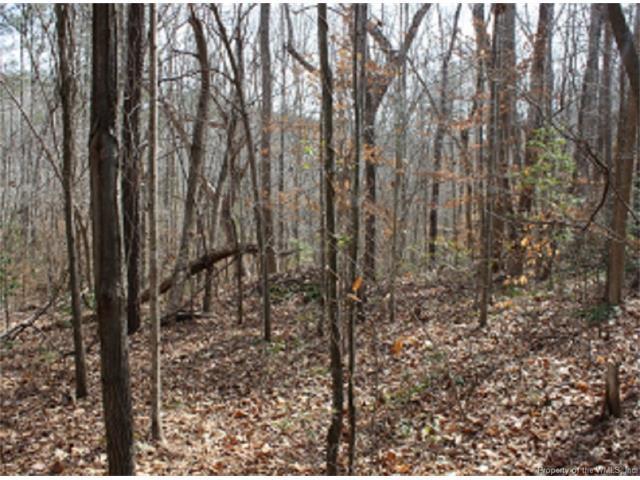 Lot 6 Deerwood Court, Gloucester, VA 23061 (#1716088) :: Green Tree Realty