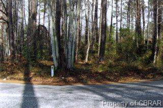 000 Lancelot Drive, Reedville, VA 22539 (MLS #1739204) :: Village Concepts Realty Group
