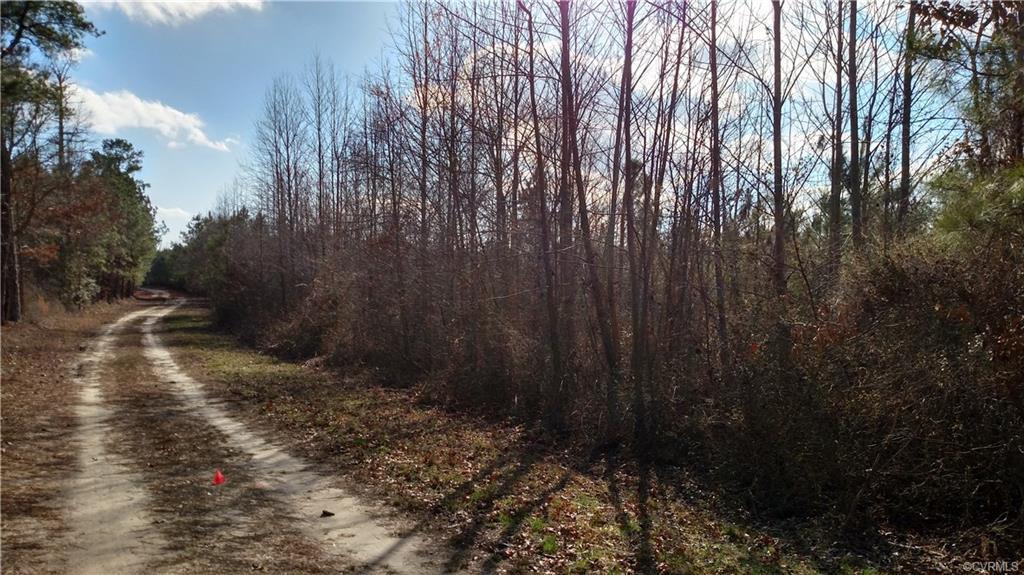 00 County Line Road - Photo 1