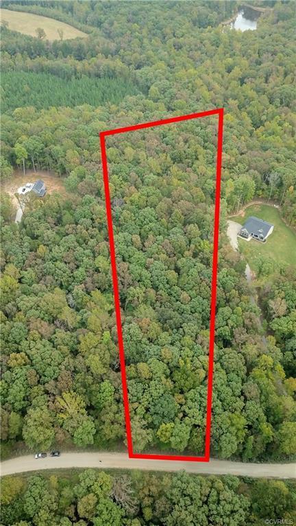 1219 Lickinghole Road, Goochland, VA 23063 (MLS #1835472) :: The RVA Group Realty