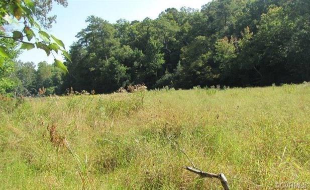 4931 Fenton Mill Road, Williamsburg, VA 23188 (#1837539) :: Abbitt Realty Co.