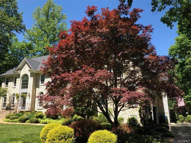 9308 Owl Trace Court, Chesterfield, VA 23838 (MLS #2016182) :: EXIT First Realty