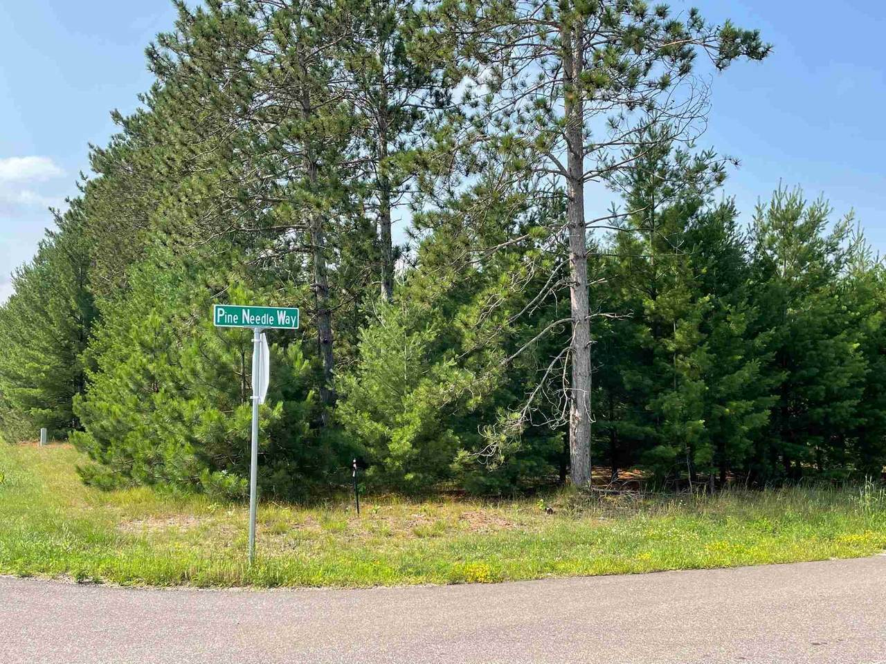 4720-Lot 22 of Grand Pine Needle Way - Photo 1