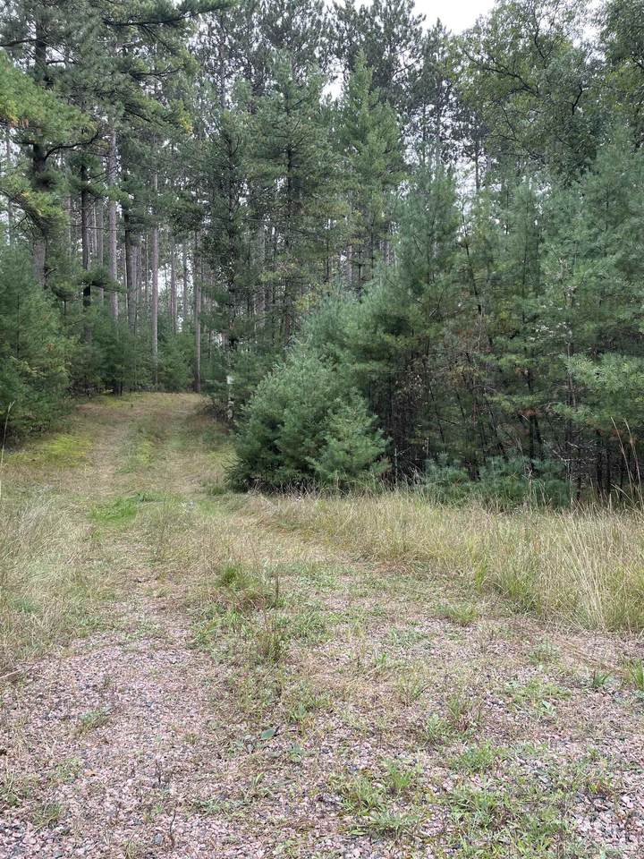 8.457 Acres-Lot 13 o Townline Road - Photo 1