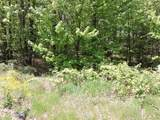 4781-Lot #19 Woodlan Turkey Trail - Photo 3