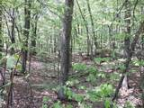 4781-Lot #19 Woodlan Turkey Trail - Photo 5