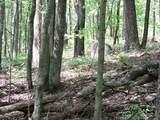 4781-Lot #19 Woodlan Turkey Trail - Photo 7