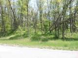 4650-Lot #3 Woodland Turkey Trail - Photo 3