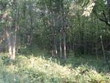 22 acres-Lot 11 Ray Art Road - Photo 2