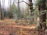 +/-68.38 Acres Water Drive - Photo 1