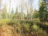 +/-68.38 Acres Water Drive - Photo 4