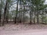 1 Acre E Lot 4 Lake 19 Road - Photo 16