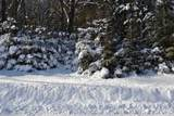 Lot 25 Deer Tail Lane - Photo 1
