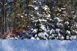 Lot 24 Deer Tail Lane - Photo 1