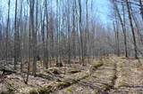 40 Ac Trappe River Road - Photo 19