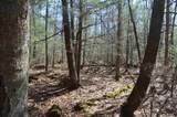 40 Ac Trappe River Road - Photo 5