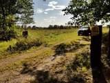 County Line Road - Photo 2