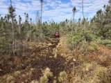 N8040-N7752 Swamp Ro Swamp Road - Photo 3