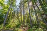 0000 Perch Lake Road - Photo 7