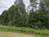 76.29 Acres-Olivotti Highway 51 - Photo 2