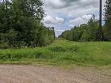 76.29 Acres-Olivotti Highway 51 - Photo 4