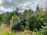 5111-Lot 37 in Grand Pinecone Court - Photo 1
