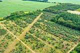 74 acres Apache Road - Photo 1