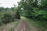 74 acres Apache Road - Photo 10