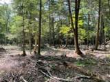 33.45 Acres County Road Ff - Photo 6