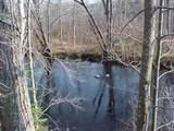 Lot 4 Wood Duck Lane - Photo 1