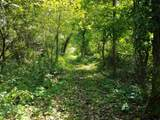 Tainter Hollow Road - Photo 4
