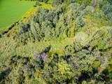 3.5 acres Timber Trail Drive - Photo 13