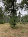 14.499 Acres-Lot 1 o Townline Road - Photo 4