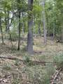 10.239 Acres-Lot 6 o Townline Road - Photo 2