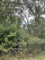 10.239 Acres-Lot 6 o Townline Road - Photo 4