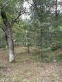 10.24 Acres-Lot 7 of Townline Road - Photo 1